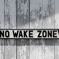NO WAKE ZONE wooden sign hand carved nautical decor wall art boating sign