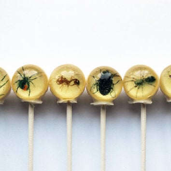 Insects spiders flies centipedes edible images ball style hard candy lollipop - 6 pc. - MADE TO ORDER