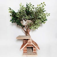 Sappling Lifelike Cat Tree House - $700