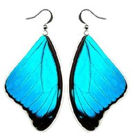 REAL Blue Morpho Butterfly Earrings