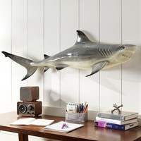 Novelty Shark Décor