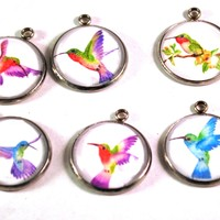 Hummingbird 20mm Stainless Steel Glass Dome Charms