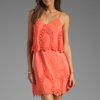 Dolce Vita Jeralyn Petticoat Embroidery Mini Dress in Melon from REVOLVEclothing.com