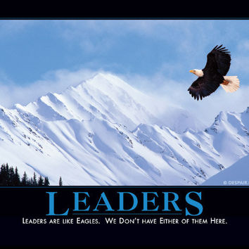 Leaders Demotivator - The Original Demotivational Posters