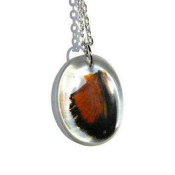 Real orange butterfly wing necklace / Tiger Longwing Butterfly in resin / Botanical jewelry / Insect wing necklace / Silver chain necklace