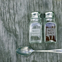 Engraved Salt and Pepper Glass Shakers - Great Gift!