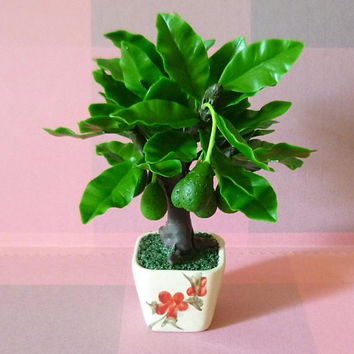 Avocado tree mini fruit figure plants H 12 cm./ Doll house decorative/ tree figure gift/miniature plants/ Dollhouse plants