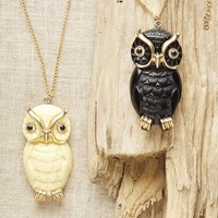 Owl - Long Chain Necklace
