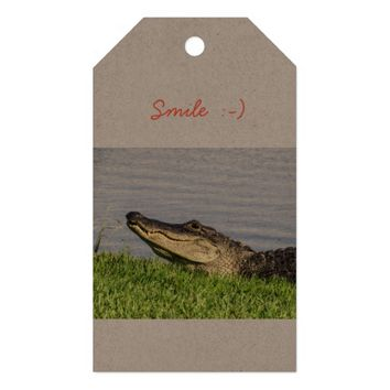 Alligator smile gift tags