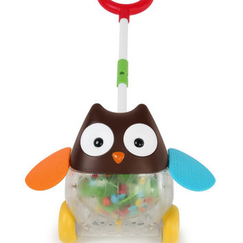 Rolling Owl Push Toy