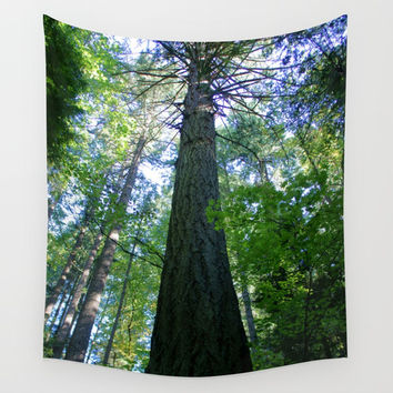 Tall Trees in The Dense Forest Wall Tapestry by BravuraMedia