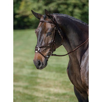Crown Premier Figure-8 Bridle | Dover Saddlery