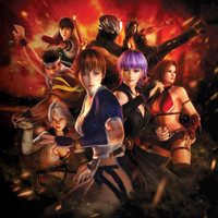 Dead or Alive 5 Video Game Poster