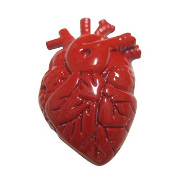 Red Anatomical Heart Pendant Magnet