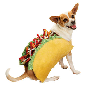 Petco Halloween Taco Dog Costume