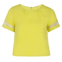 Lime Mesh Paneled Top | Top | Desire