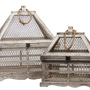 Wooden & Wire Mesh Terrarium Set Of Two W/ Jute Rope Handle