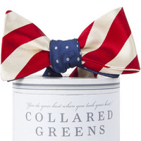 Collared Greens Stars & Stripes Mixer Bow Tie