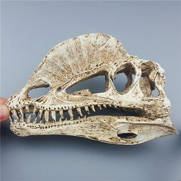 MRZOOT 2018 Top Fashion Direct Selling  Resin Dinosaur Skeleton Model Double Crowned Dragon Skull Animal Research Teaching