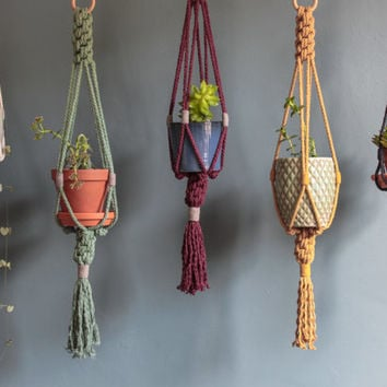 Small Macrame Plant Hanger > 100% Cotton Cord with Wooden Ring > Variety of Colours Available