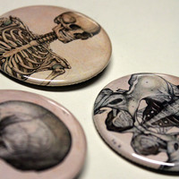 Skeleton Pins!