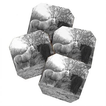 Allyson Johnson Horses Grazing Coaster Set