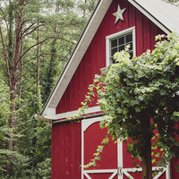 Red Barn 3 by Andrea Anderegg Photography