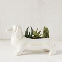 LMF4XG Dachshund Planter | Urban Outfitters