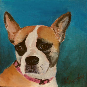 Old Boston Bulldog Terrier Original Acrylic Malowany Painting Animal Pet Dog