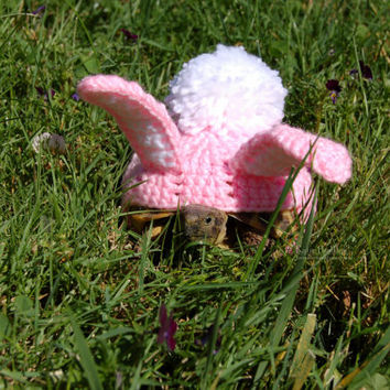 Easter Bunny tortoise cozy - made to order