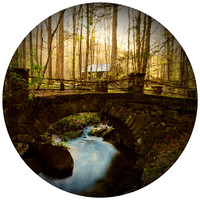 Paul Moore's Abandoned Home in Elkmont, Great Smokey Mountains Circle wall decal