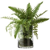 Fern in Glass Floral Table Arrangement - 14""