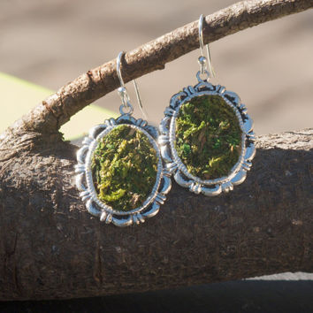 Moss Earrings, Eco Friendly, Terrarium Jewelry, Terrarium Earrings, Living Plant Jewelry, Garden Earrings, Earth Day Earrings