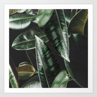 Tropical Plants Art Print by Lostanaw