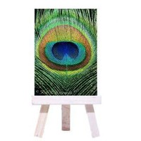 ACEO Card ATC Art Card Eye See You Peacock by LMRPhotography