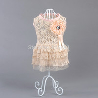French Lace Dog Dress