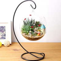DIY Hydroponic Plant Flower Hanging Glass Vase Container Home Garden Decor Brand New
