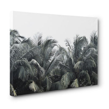 Cozumel Palms - Gallery Wrap Canvas, Tropical Coconut Palm Trees, Green Beach Surf Style Landscape Canvas. In 8x10 11x14 16x20 20x24 24x36