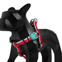 Lola | Step-in Dog Harness