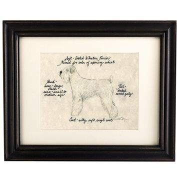 Soft Coated Wheaten Terrier Dog Print