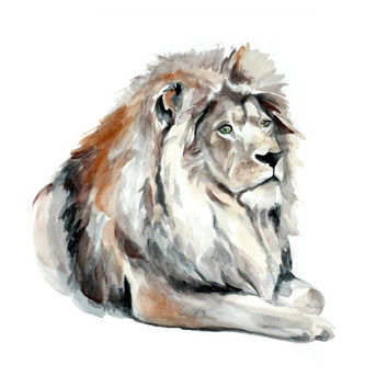 Lion Original Watercolor Painting 13x19 fine art wild animal illustration wall art home decor realistic artwork