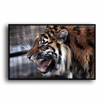 SR--0493 Bengal Tiger Natural Scenery Animal. HD Canvas Print Home decoration Living Room bedroom Wall pictures Art painting