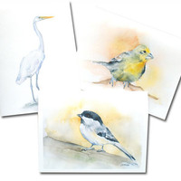Bird Watercolor Note Cards Set of 6 Chickadee Egret Finch Brown Envelopes