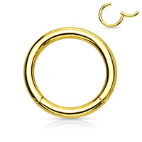 Gold Titanium Anodized  Surgical Steel Hinged Segment Rings Cartilage Tragus Daith Helix Body Jewelry 16ga