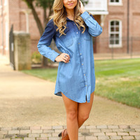 Buddy Love  BLISS OMBRE DRESS