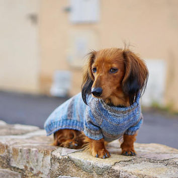 Dog sweater Dachshund Sweater Dog Clothes Doxie Clothes Dog coat Dog Jacket for Pets Sweater for Clothes for pets Dog pullover Doxie Clothes