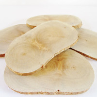 Blank Wood, Wood Slices Set of 7, Wood Discs, Craft Wood, Birch Wood Slices, Tree Slices