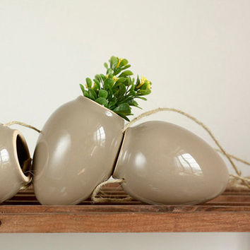 ONE Egg Heart Shape Hanging Planters -- succulent pot -- kitchen herb flower box