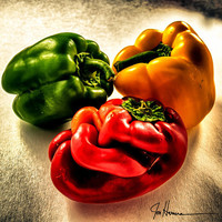 Three Bell Peppers HDR-12x12 - Fine Art Photograph