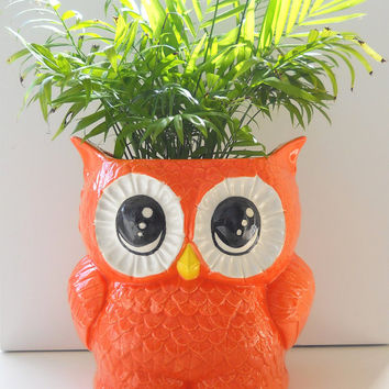 Ceramic X-Large Owl Planter Vintage Design in Orange Palm Flower Herb Planter Great Owl Lover Gift